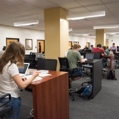Patrons using Collaborative Space to Study